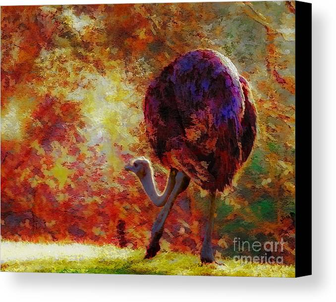 African Canvas Print featuring the photograph Ostrich II by Arne Hansen