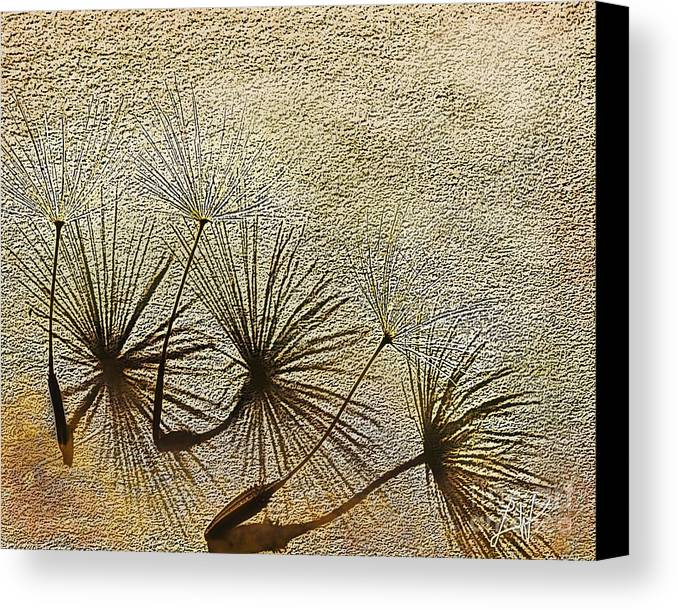 Nature Canvas Print featuring the digital art Three Wishes by Artist and Photographer Laura Wrede