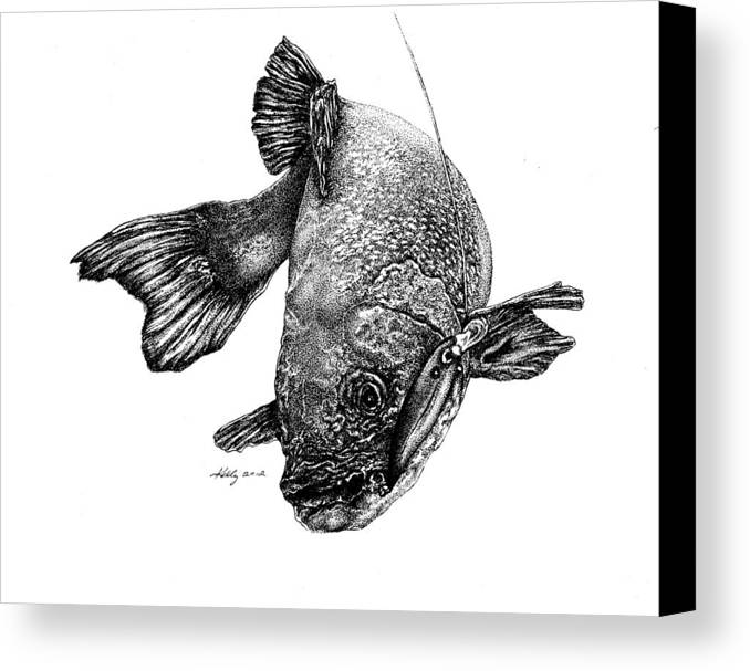 Walleye Canvas Print featuring the drawing Walleye by Kathleen Kelly Thompson