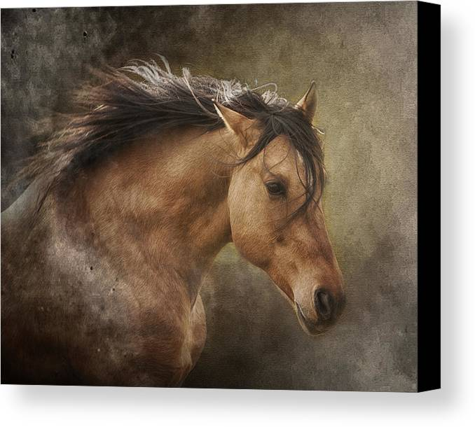 Equine Canvas Print featuring the photograph Chase The Wind by Ron McGinnis