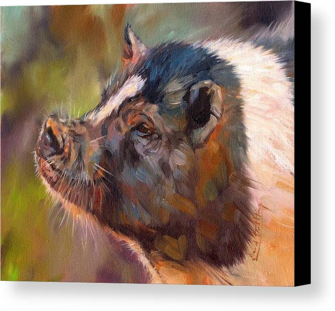 Pig Canvas Print featuring the painting Pig by David Stribbling