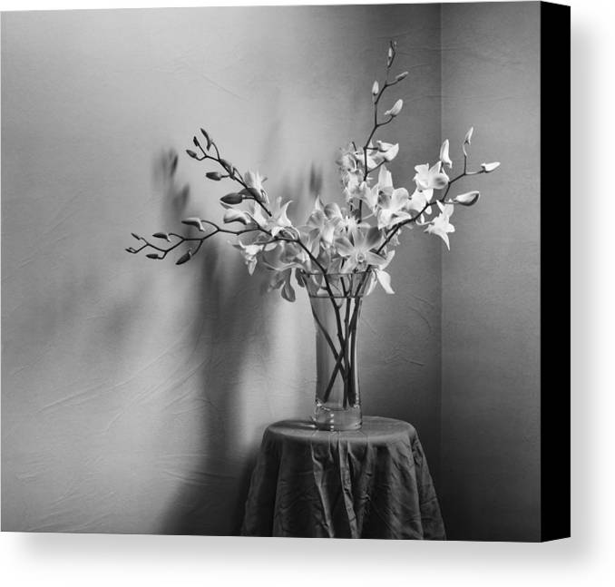 Orchid Canvas Print featuring the photograph Beautiful Melancholy by Amy Weiss