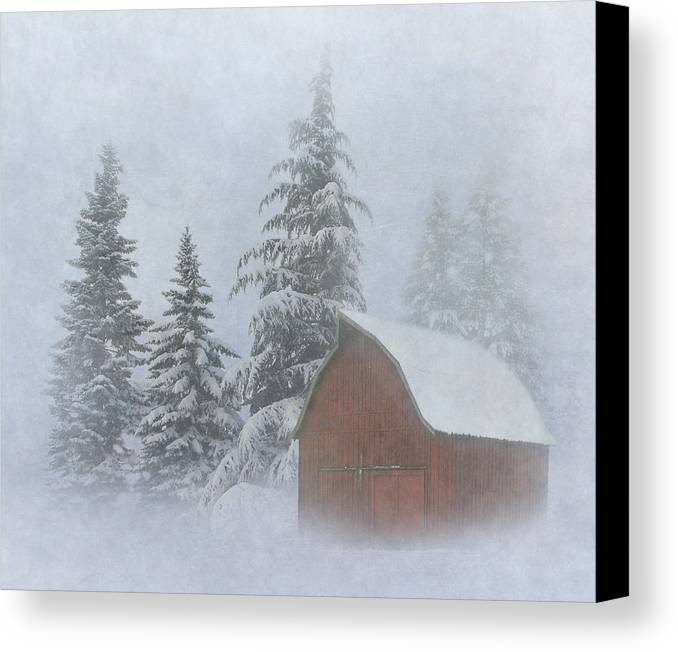 Winter Canvas Print featuring the photograph Country Winter by Angie Vogel