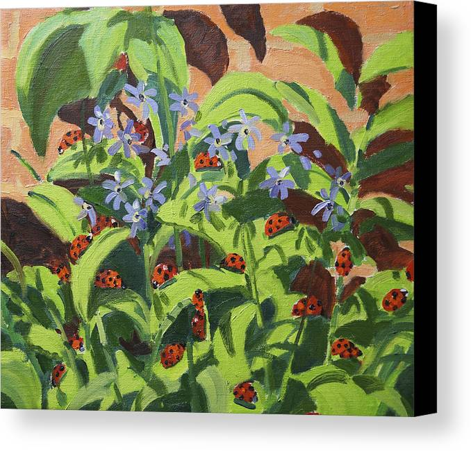 Floral Canvas Print featuring the painting Ladybirds by Andrew Macara
