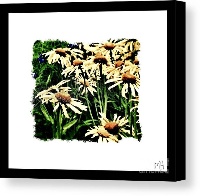Photo Canvas Print featuring the photograph Field Of Love by Marsha Heiken
