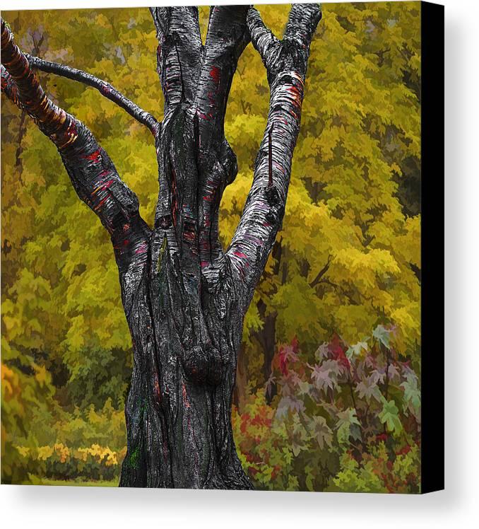 Autumn Canvas Print featuring the photograph Autumn Trees3 by Vladimir Kholostykh