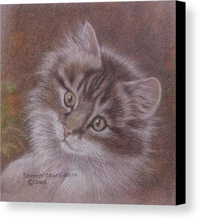 Canvas Print featuring the painting Tabby Kitten by Dorothy Coatsworth