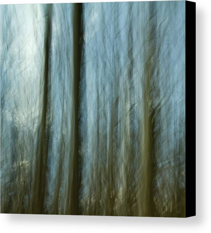 Impressionist Canvas Print featuring the photograph A Walk In The Woods IIi by Bob Retnauer