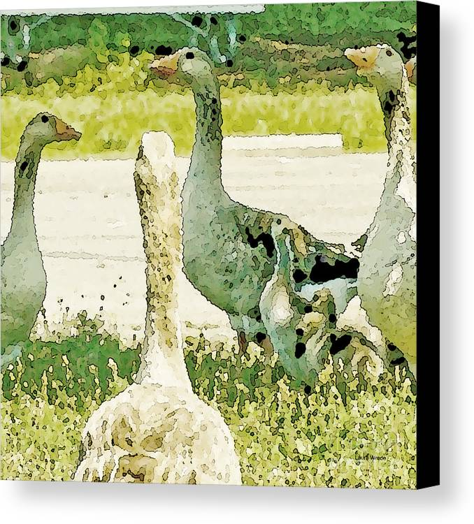 Geese Canvas Print featuring the photograph Goose Chat by Artist and Photographer Laura Wrede