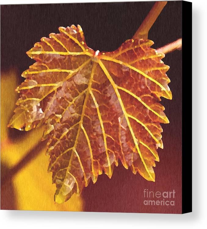 Red Grape Leaf Canvas Print featuring the painting Grapevine In Fall by Artist and Photographer Laura Wrede