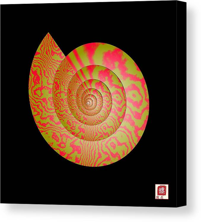 Conch Canvas Print featuring the photograph Math Conch by GuoJun Pan