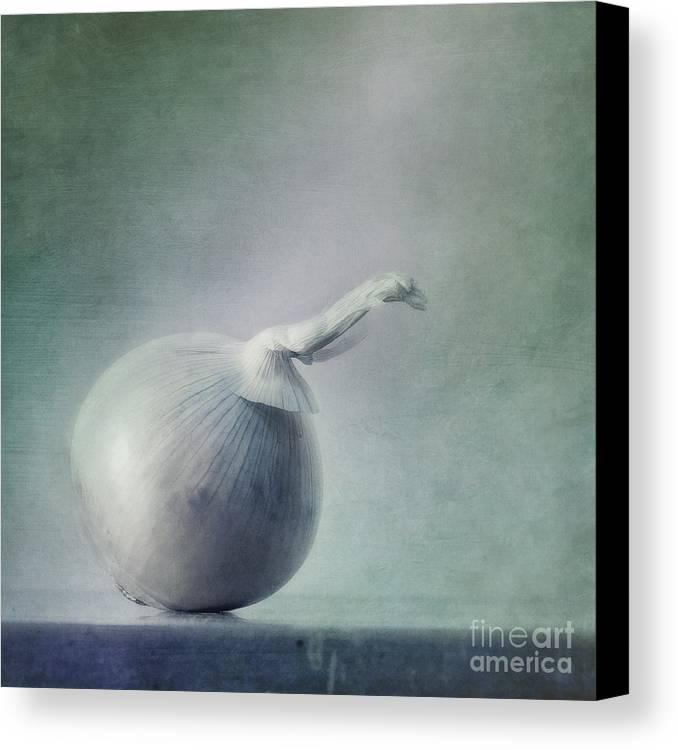 Zwiebel Canvas Print featuring the photograph Onion by Priska Wettstein