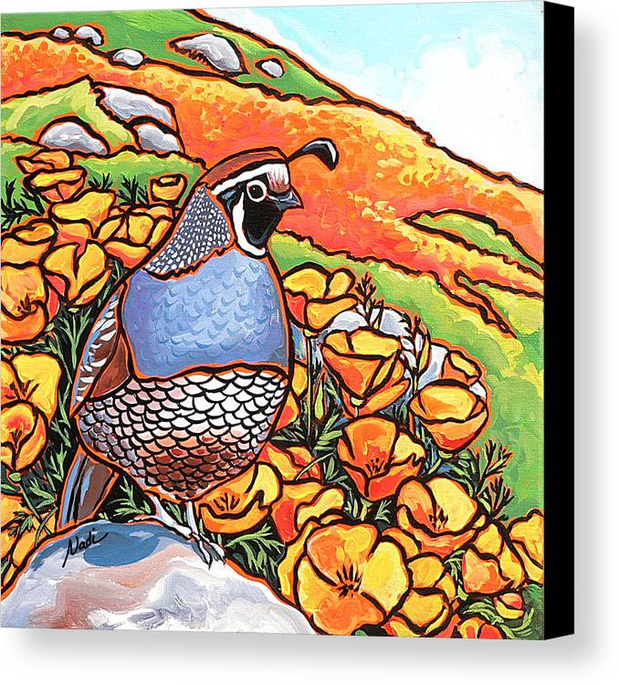 California Poppies Canvas Print featuring the painting Quail Poppies by Nadi Spencer
