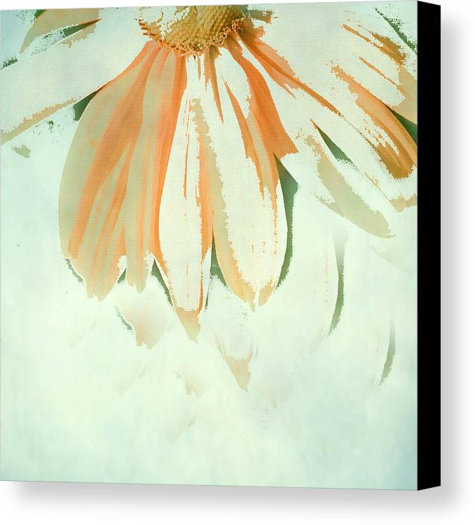 Floral Art Canvas Print featuring the photograph Reconstructed Flower No.1 by Bonnie Bruno