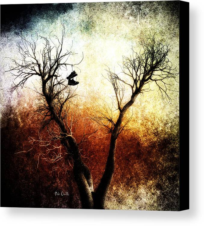 Tree Canvas Print featuring the photograph Sneakers In The Tree by Bob Orsillo
