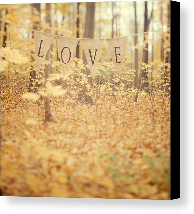 Valentine Canvas Print featuring the photograph All Is Love by Irene Suchocki