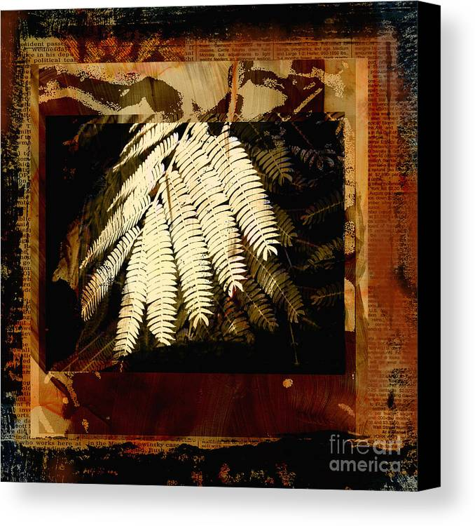 Mixed Media Digital Collage Canvas Print featuring the mixed media Mimosa Leaf Collage by Ann Powell