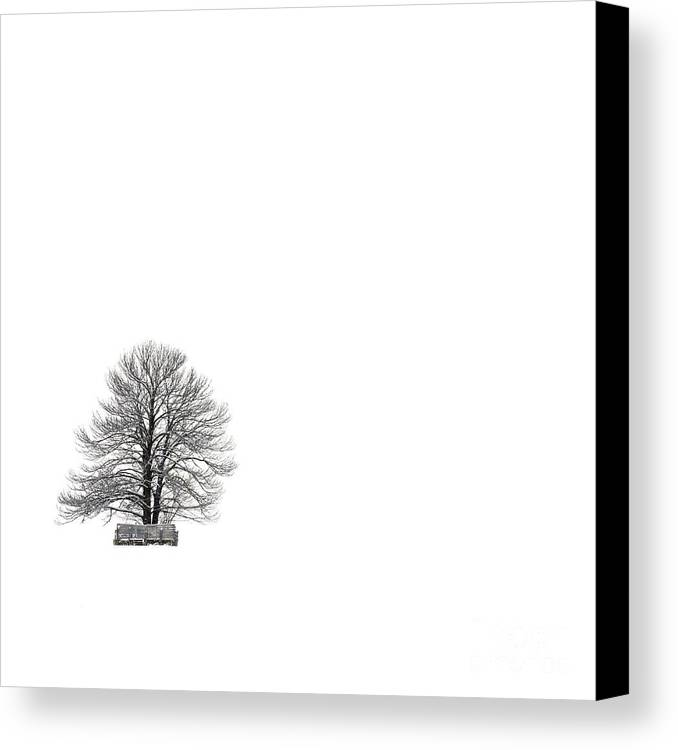 Landscape Canvas Print featuring the photograph Tree Isolated Under The Snow In The Middle Field In Winter. by Bernard Jaubert