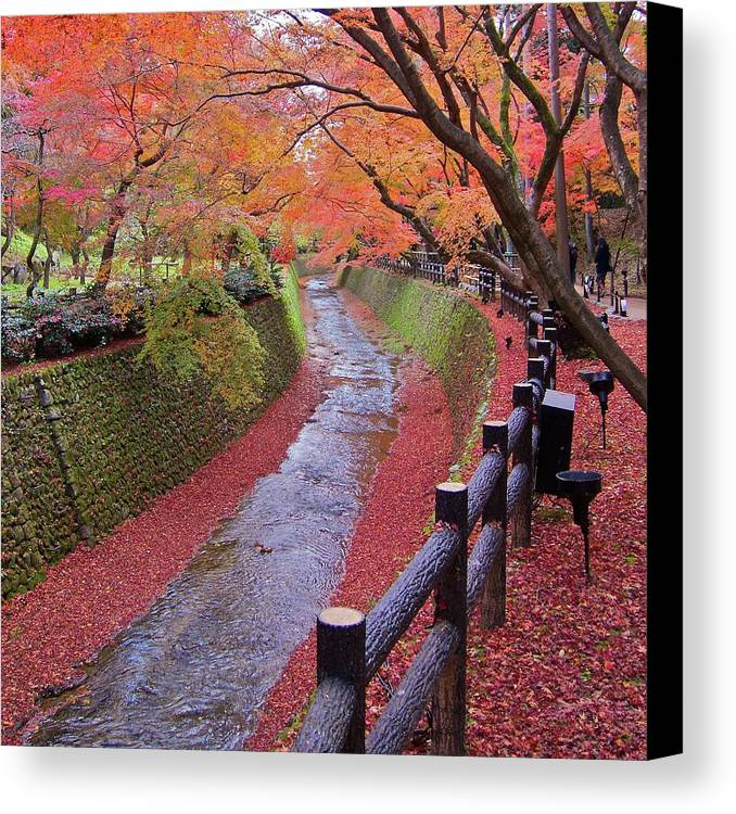 Square Canvas Print featuring the photograph Fall Colors Along Bending River In Kyoto by Jake Jung