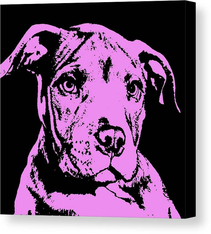 Pit Bull Canvas Print featuring the painting Purple Little Pittie by Dean Russo