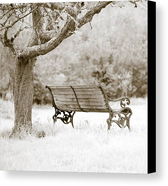 Frank Tschakert Canvas Print featuring the photograph Tranquility by Frank Tschakert
