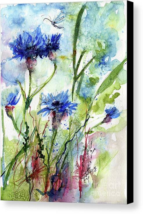 Blue Canvas Print featuring the painting Cornflowers Korn Blumen Watercolor Painting by Ginette Callaway