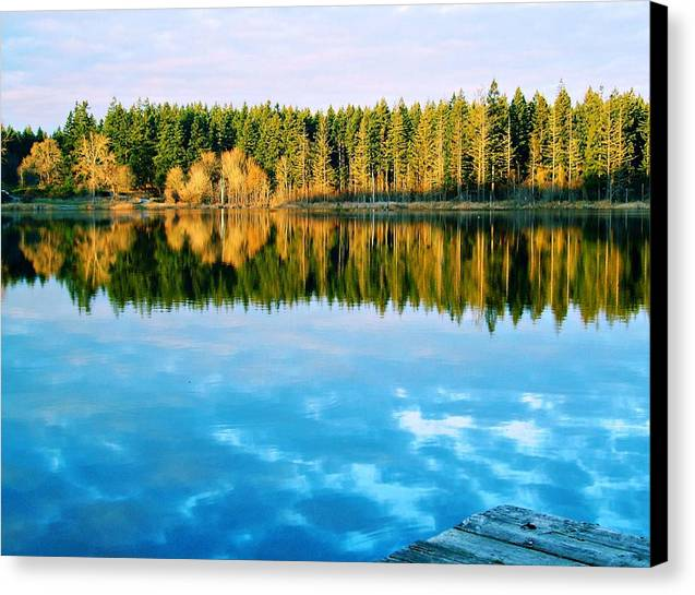 Reflections Canvas Print by Alicia Cozort