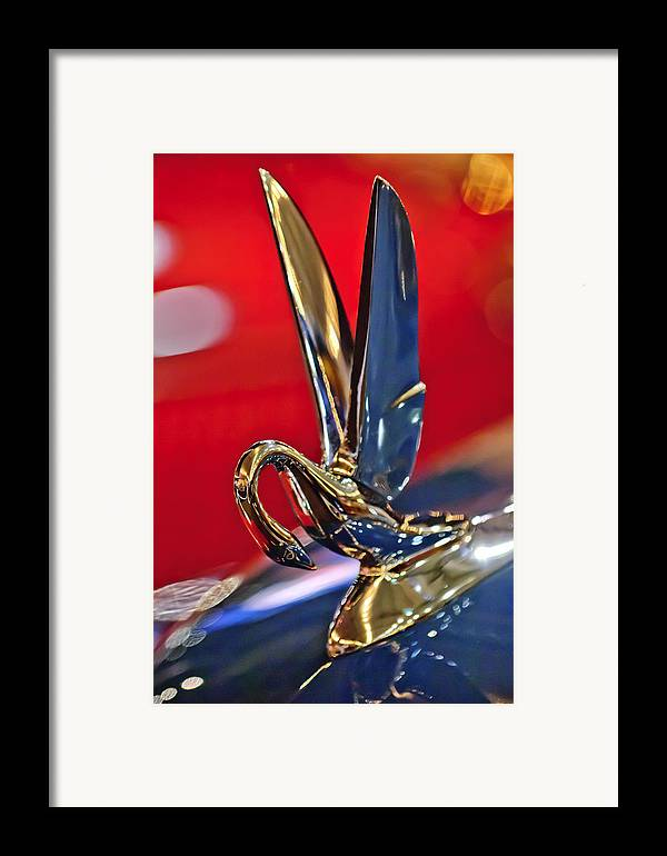 1948 Packard Super 8 Victoria 2 Door Convertible Framed Print featuring the photograph 1948 Packard Hood Ornament by Jill Reger