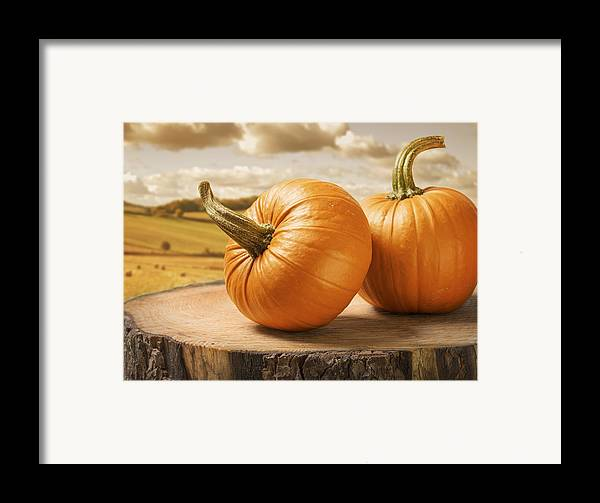 Pumpkin Framed Print featuring the photograph Pumpkins by Amanda And Christopher Elwell