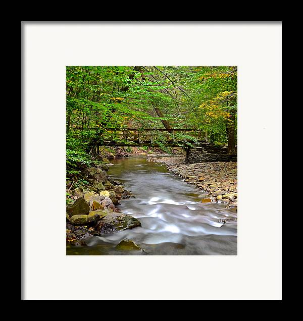 Babbling Framed Print featuring the photograph Babbling Brook by Frozen in Time Fine Art Photography