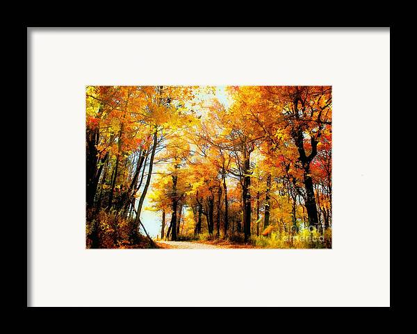 Autumn Leaves Framed Print featuring the photograph A Golden Day by Lois Bryan