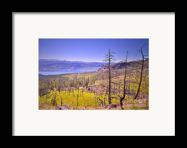Mountain Framed Print featuring the photograph A View From Okanagan Mountain by Tara Turner