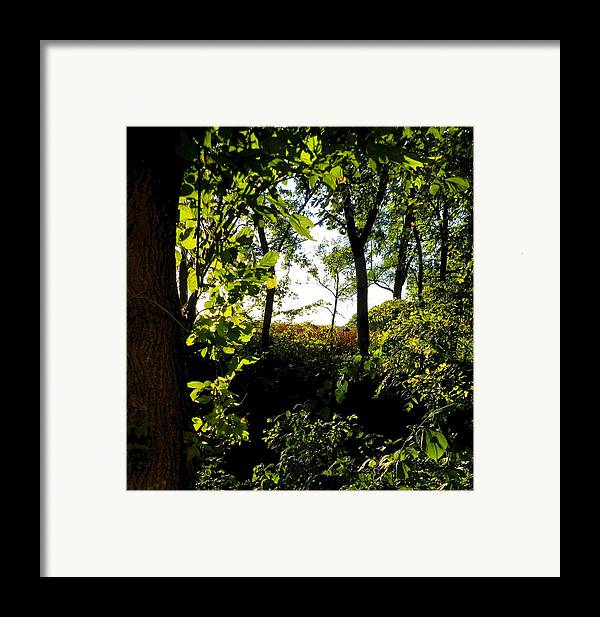 Rural Scene Framed Print featuring the photograph Across The Way by Julie Dant