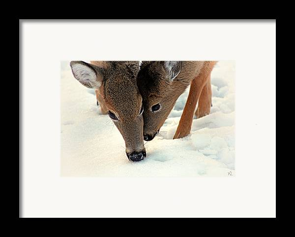 Two Framed Print featuring the photograph Adoring Love by Karol Livote