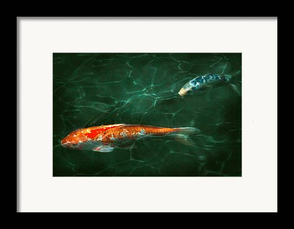 Koi Framed Print featuring the photograph Animal - Fish - Koi - Another Fish Story by Mike Savad