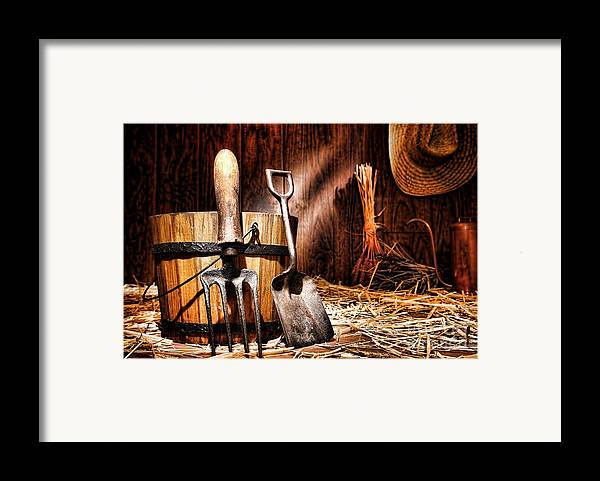 Gardening Framed Print featuring the photograph Antique Gardening Tools by Olivier Le Queinec