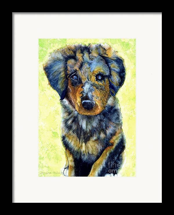 Shepherd Framed Print featuring the painting Australian Shepherd Puppy by Janine Riley