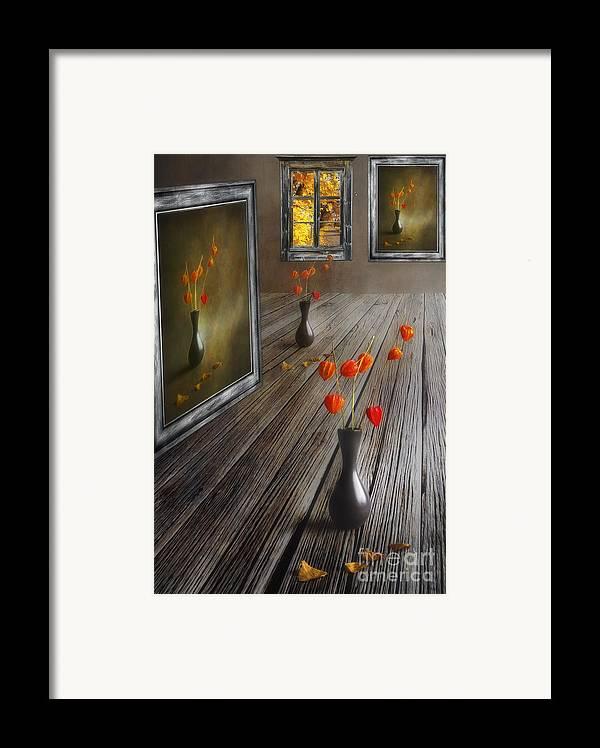 Art Framed Print featuring the photograph Autumn Colours by Veikko Suikkanen