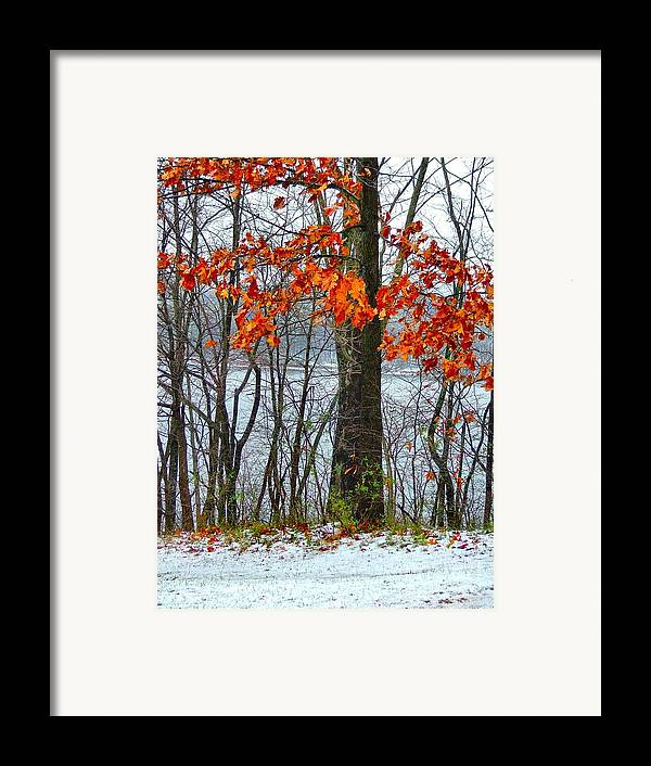Autumn Leaves Framed Print featuring the photograph Autumn In Winter by Julie Dant