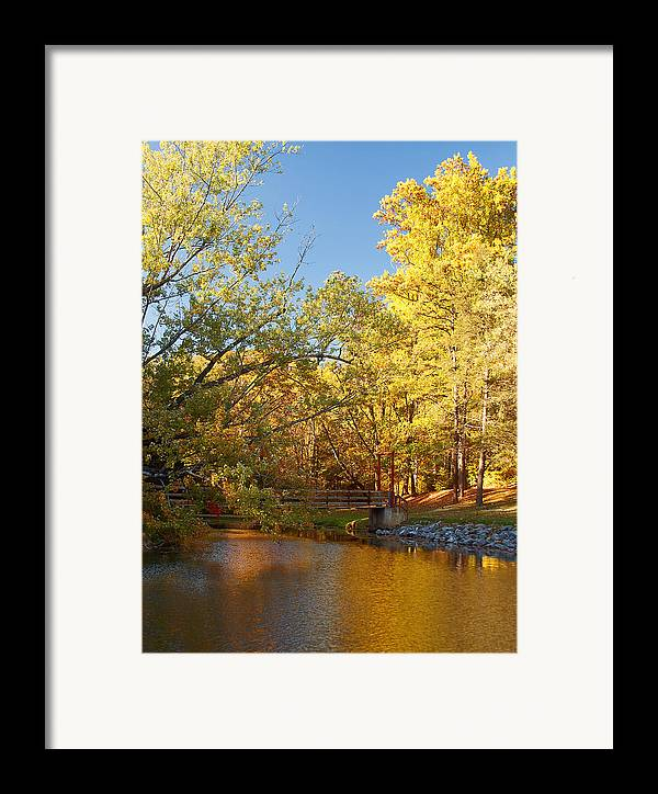 Autumn Framed Print featuring the photograph Autumn's Golden Pond by Kim Hojnacki
