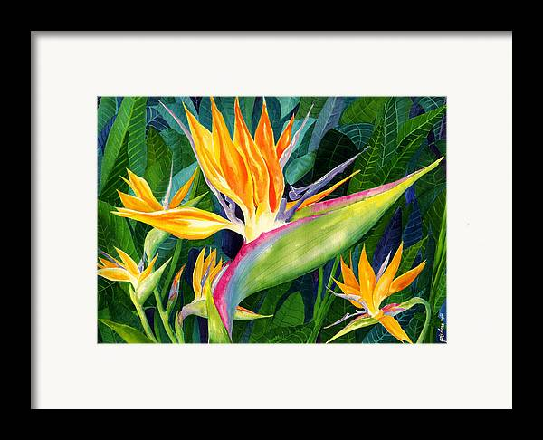 Flower Paintings Framed Print featuring the painting Bird-of-paradise by Janis Grau