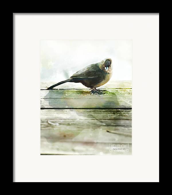Bird Images Framed Print featuring the painting Bird On The Deck by Artist and Photographer Laura Wrede