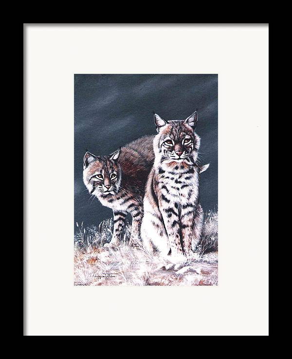 Bobcat Framed Print featuring the painting Bobcats In The Hood by DiDi Higginbotham