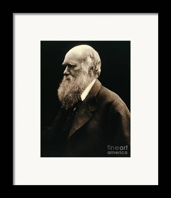 Historic Framed Print featuring the photograph Charles Darwin By Julia Margaret by Wellcome Images