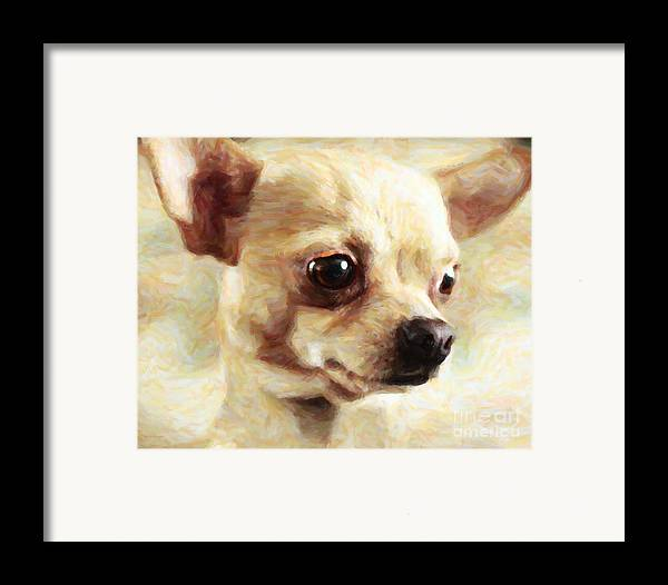 Animal Framed Print featuring the photograph Chihuahua Dog - Painterly by Wingsdomain Art and Photography