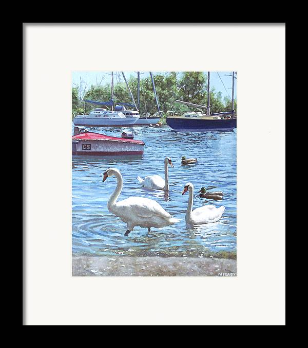 Christchurch Framed Print featuring the painting Christchurch Harbour Swans And Boats by Martin Davey