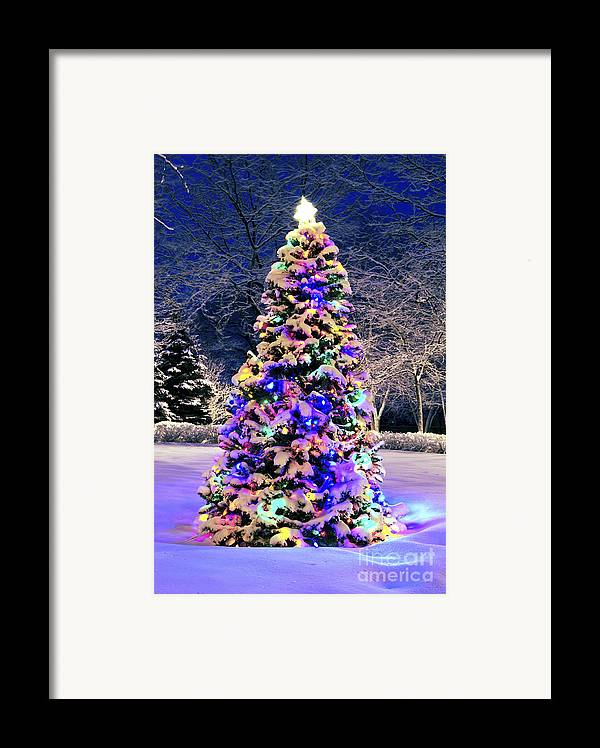 Christmas Framed Print featuring the photograph Christmas Tree In Snow by Elena Elisseeva