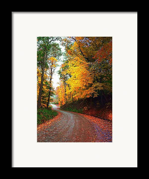 Country Framed Print featuring the photograph Country Autumn Gravel Road by Julie Dant