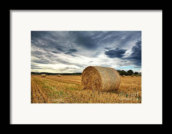 Agricultural Framed Print featuring the photograph Cut Field by Jane Rix