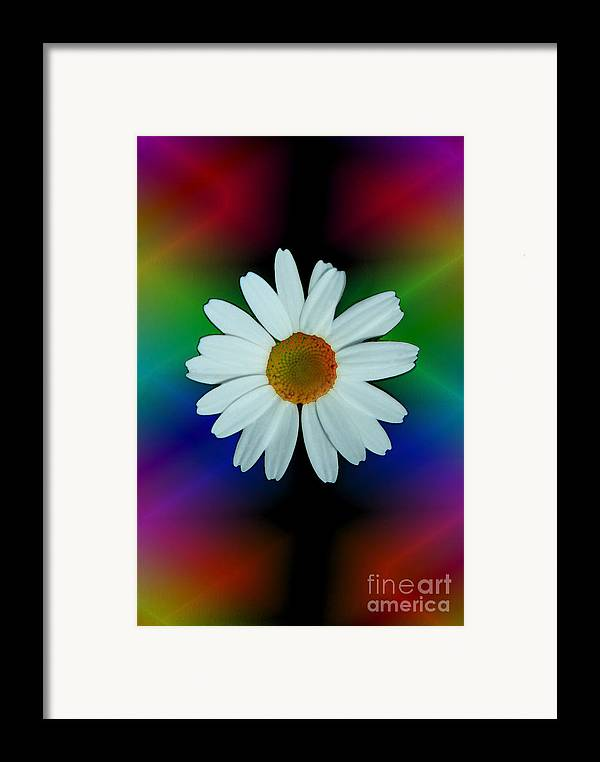 Abstract Framed Print featuring the photograph Daisy Bloom In Neon Rainbow Lights by ImagesAsArt Photos And Graphics